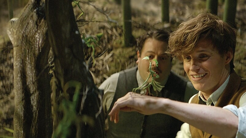Fantastic_Beasts_and_Where_to_Find_Them_photo4